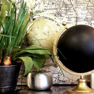 vignette closeup globes map plant