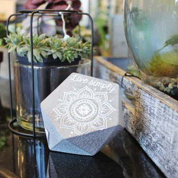 Lifestyle shot Live Simply Rock with Succulent Plant