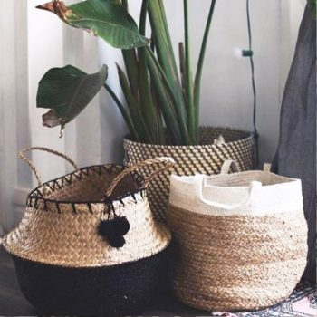 indaba trading belly baskets with plant